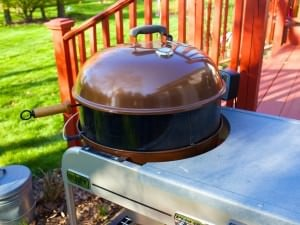 Rotisserie mounted and spinning