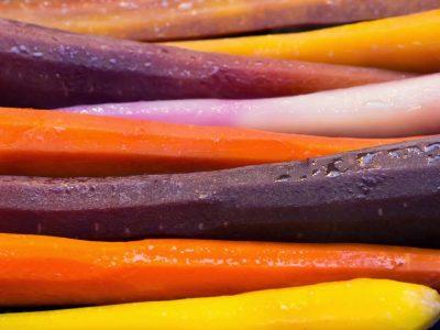 Closeup of multi-colored carrots