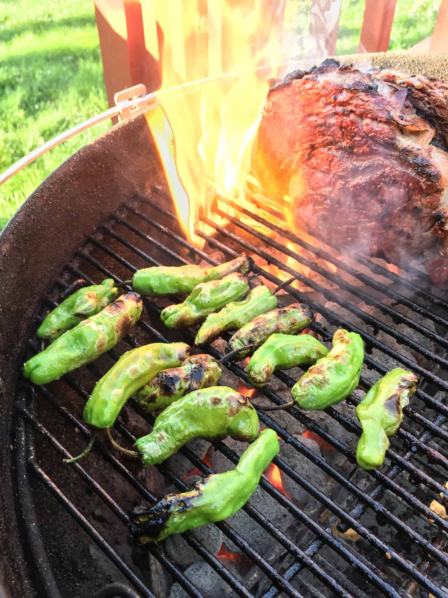 Grilled Shishito Peppers - DadCooksDinner