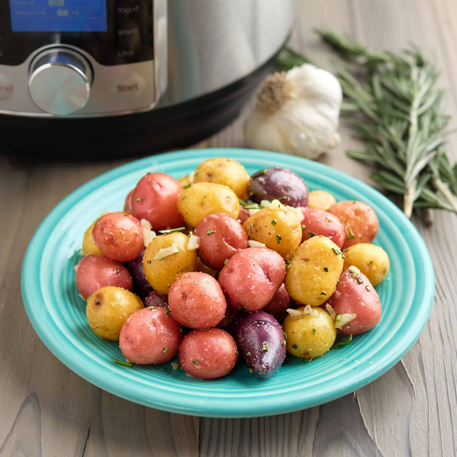 A plate of rainbow baby potatoes sprinkled with garlic and rosemary, with a sprig of rosemary, a head of garlic, and a pressure cooker in the background