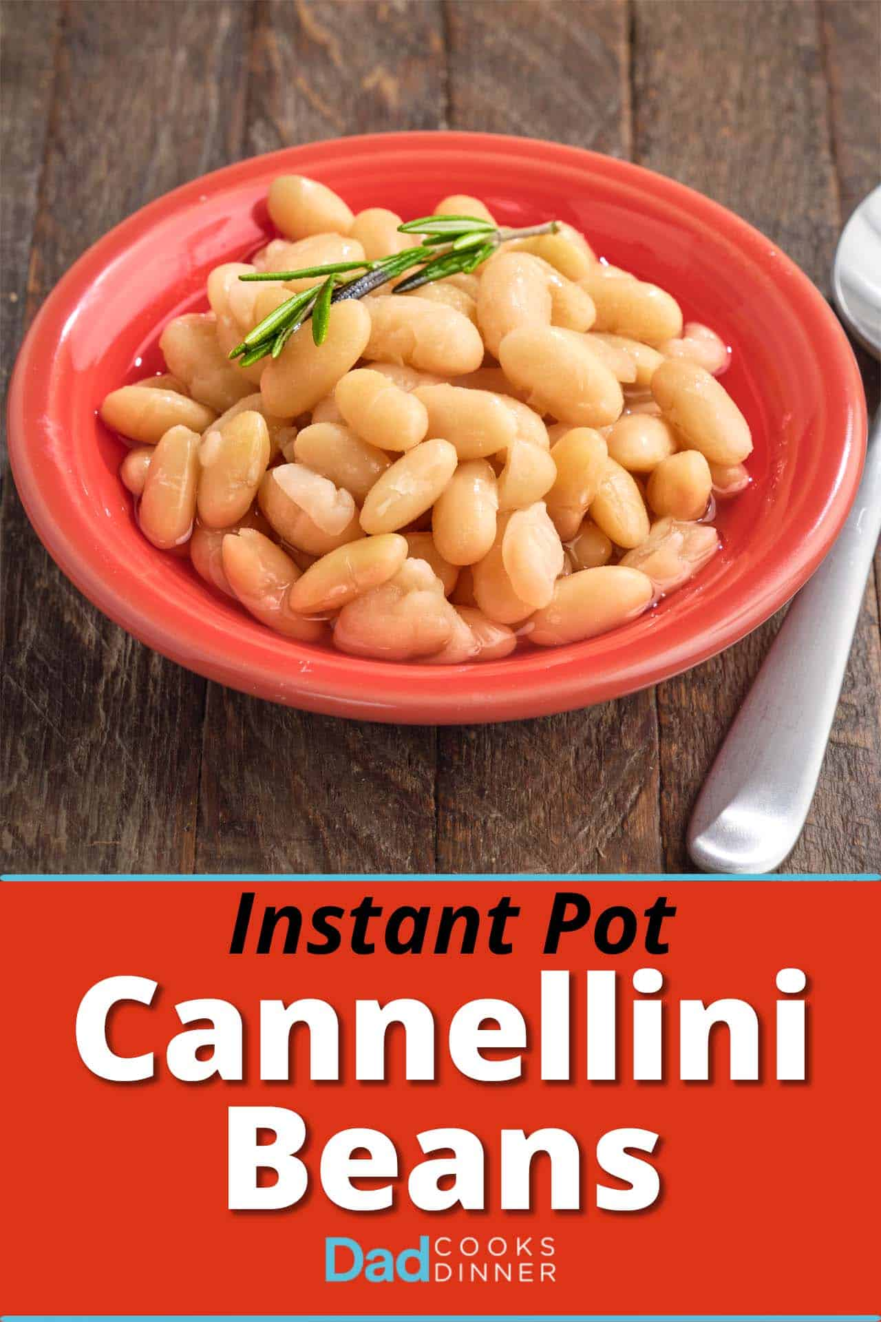 A bowl of cannellini beans with a sprig of rosemary on top and a spoon on the side